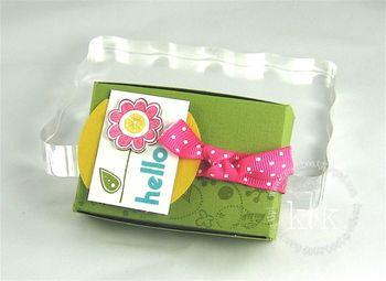 Hello Box Make & Take