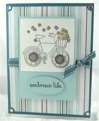 Embrace_life